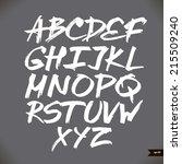 handwritten calligraphic... | Shutterstock .eps vector #215509240