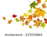maple autumn falling leaves ... | Shutterstock .eps vector #215524864