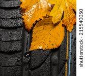 Car Tire Profile With Autumn...