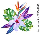 Tropical Flowers In Watercolor...