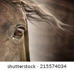 Eye Of Horse With Mane On Dark...