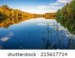 Stock photo autumnal lake near the forest 215617714