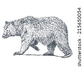 bear sketch drawing isolated on ... | Shutterstock .eps vector #215650054