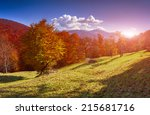 colorful autumn landscape in... | Shutterstock . vector #215681716