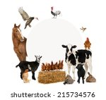 Group Farm Animals Surrounding A - Fine Art prints