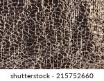 shining material with the... | Shutterstock . vector #215752660