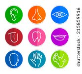 set of colored icons with flat... | Shutterstock .eps vector #215859916
