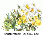 bouquet flowers on a white... | Shutterstock . vector #215863120