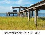 Wooden Pier Above Grass Leadin...