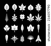 set icons of leaf isolated on...   Shutterstock .eps vector #216057790
