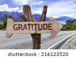 gratitude wooden sign on a... | Shutterstock . vector #216123520