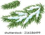 Fur Tree Branch Under Snow....