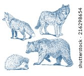 forest animals drawings set... | Shutterstock .eps vector #216298654