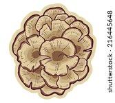 hand drawn edible maitake... | Shutterstock .eps vector #216445648