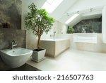 View of spacious bright modern house bathroom - stock photo