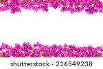 16 9 Flower Frame  Pink...