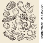 set with various drawn fruits... | Shutterstock .eps vector #216559054