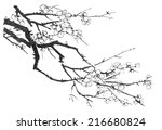 chinese painting of flowers ... | Shutterstock . vector #216680824