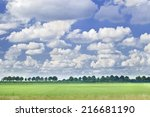 Dutch Landscape With A Row Of...