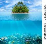 underwater coral reef seabed... | Shutterstock . vector #216828523