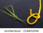 gold color rope cable with... | Shutterstock . vector #216831046