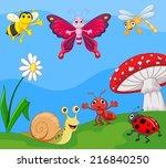 Cartoon Small Animal