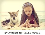 Stock photo child and puppy and kitten on a sandy beach 216870418