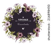 wreath of convolvulus  ... | Shutterstock . vector #216898450