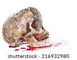 Gecko On Skull