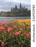 Small photo of Ottawa Tulip Festival with Parliament Hill in the background