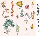 floral background. set... | Shutterstock .eps vector #216989590