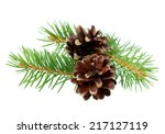 pine cones with branch isolated ... | Shutterstock . vector #217127119