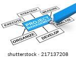 project management | Shutterstock . vector #217137208