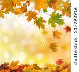autumn leaves | Shutterstock . vector #217293916