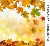 autumn leaves   Shutterstock . vector #217293916