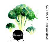 broccoli. hand drawn watercolor ... | Shutterstock .eps vector #217317799