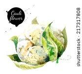 cauliflower. hand drawn... | Shutterstock .eps vector #217317808