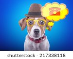 beautiful dog with glasses and... | Shutterstock . vector #217338118