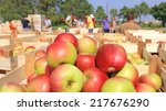 cart full of apples after... | Shutterstock . vector #217676290