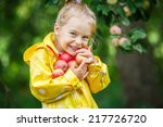 Little Girl Holding Apples In...