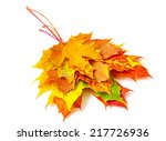 autumn maple leafs isolated on... | Shutterstock . vector #217726936
