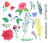 watercolor flowers and plants... | Shutterstock .eps vector #217736770