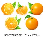vector collection of fresh ripe ... | Shutterstock .eps vector #217749430