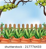 illustration of a backyard with ... | Shutterstock .eps vector #217776433