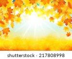 vector illustration of autumn... | Shutterstock .eps vector #217808998
