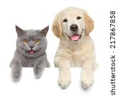 Stock photo happy cat and dog show paws above white banner isolated 217867858