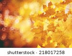 fall  autumn  leaves background.... | Shutterstock . vector #218017258
