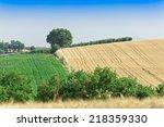 the present a provincial...   Shutterstock . vector #218359330