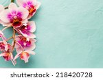 orchids bloom. white with pink... | Shutterstock . vector #218420728