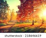 Autumn. Fall. Autumnal Park....